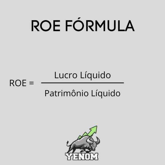 ROE fórmula return on equity